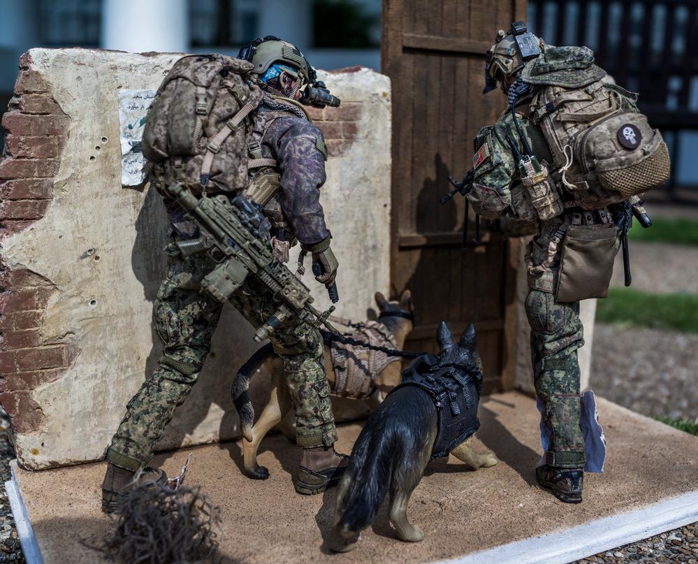 Diorama --- Navy Seal in action !!!-_dsc5449-jpg
