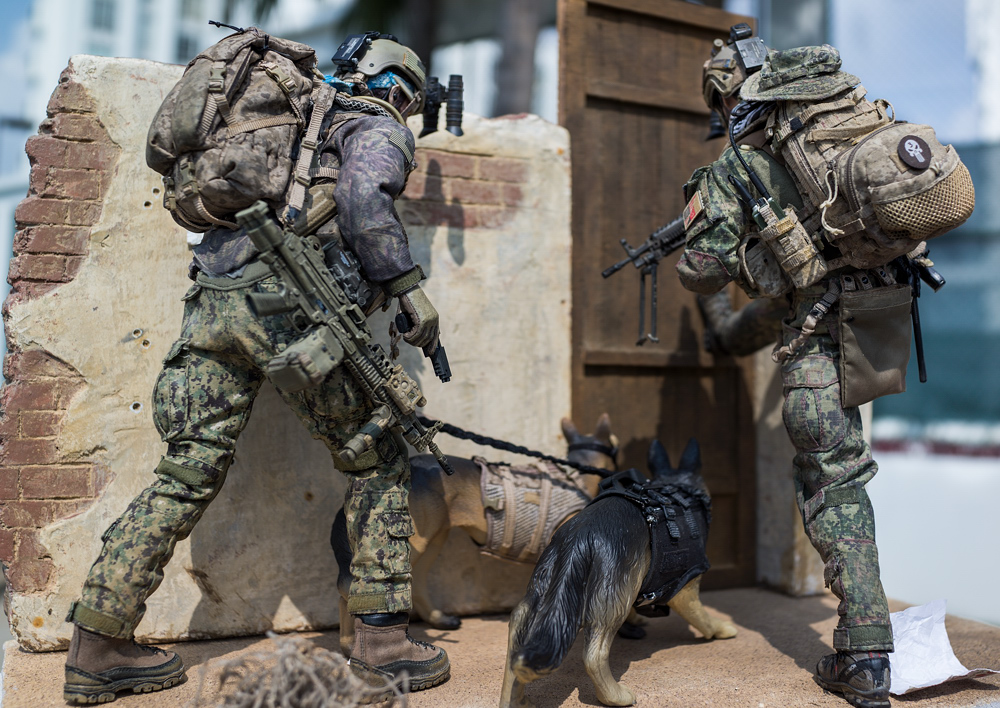 Diorama --- Navy Seal in action !!!-_dsc5479-jpg
