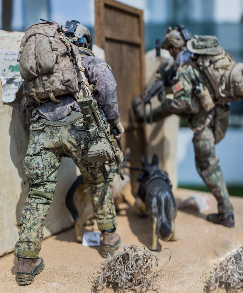 Diorama --- Navy Seal in action !!!-_dsc5480-jpg